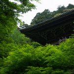緑薫る、兵庫県姫路市・書写山円教寺に行ってきた