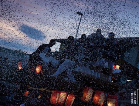 大阪市内最大のだんじり祭り・杭全神社平野郷夏まつり