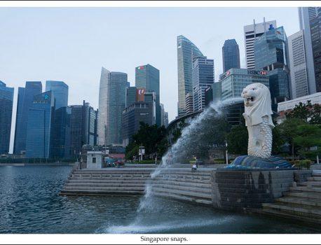 シンガポール snaps.