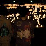 奈良の夏の風物詩、なら燈花会に行ってきた