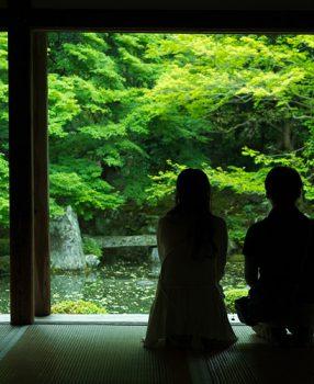 京都洛北、何気に足を向けた蓮花寺は深い緑に咽ぶようでした。