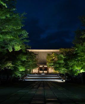 京都の世界遺産、仁和寺で初めて行われた青もみじライトアップに行ってきた