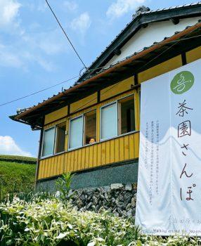 日本緑茶発祥の地とされる京都・宇治田原町にある小山園製茶場さんの茶畑に行ってきた